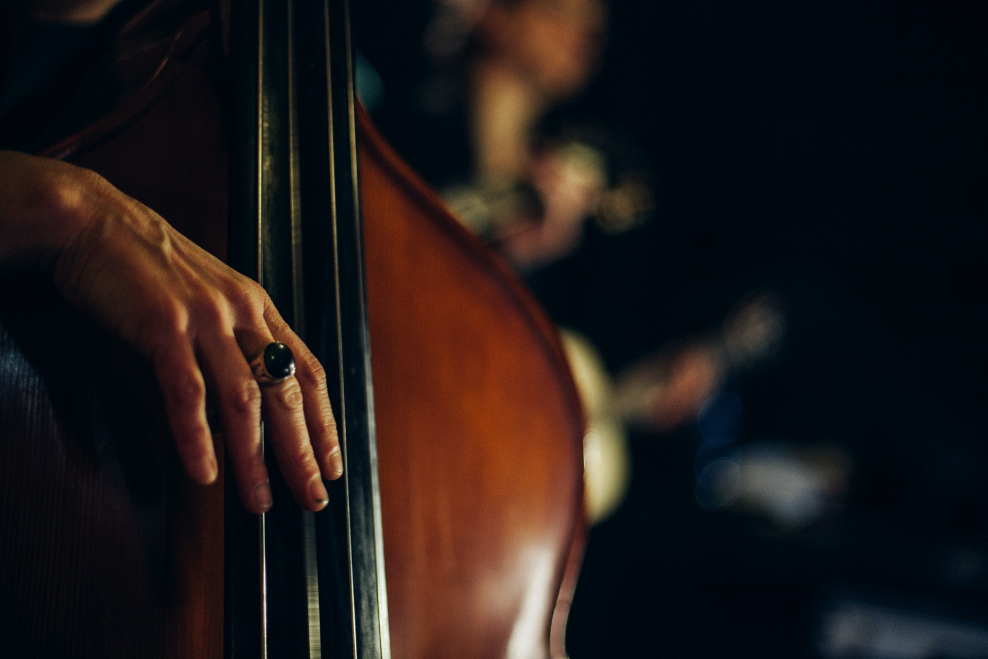 Freaky Mermaids, Giorgia Poli, Double Bass | photo: Laura LaStram Stramacchia